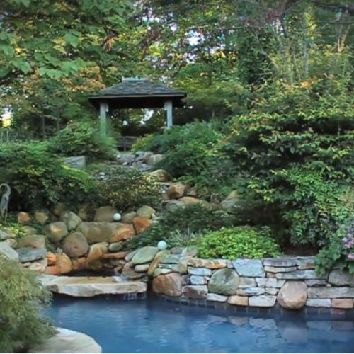 A Garden Oasis